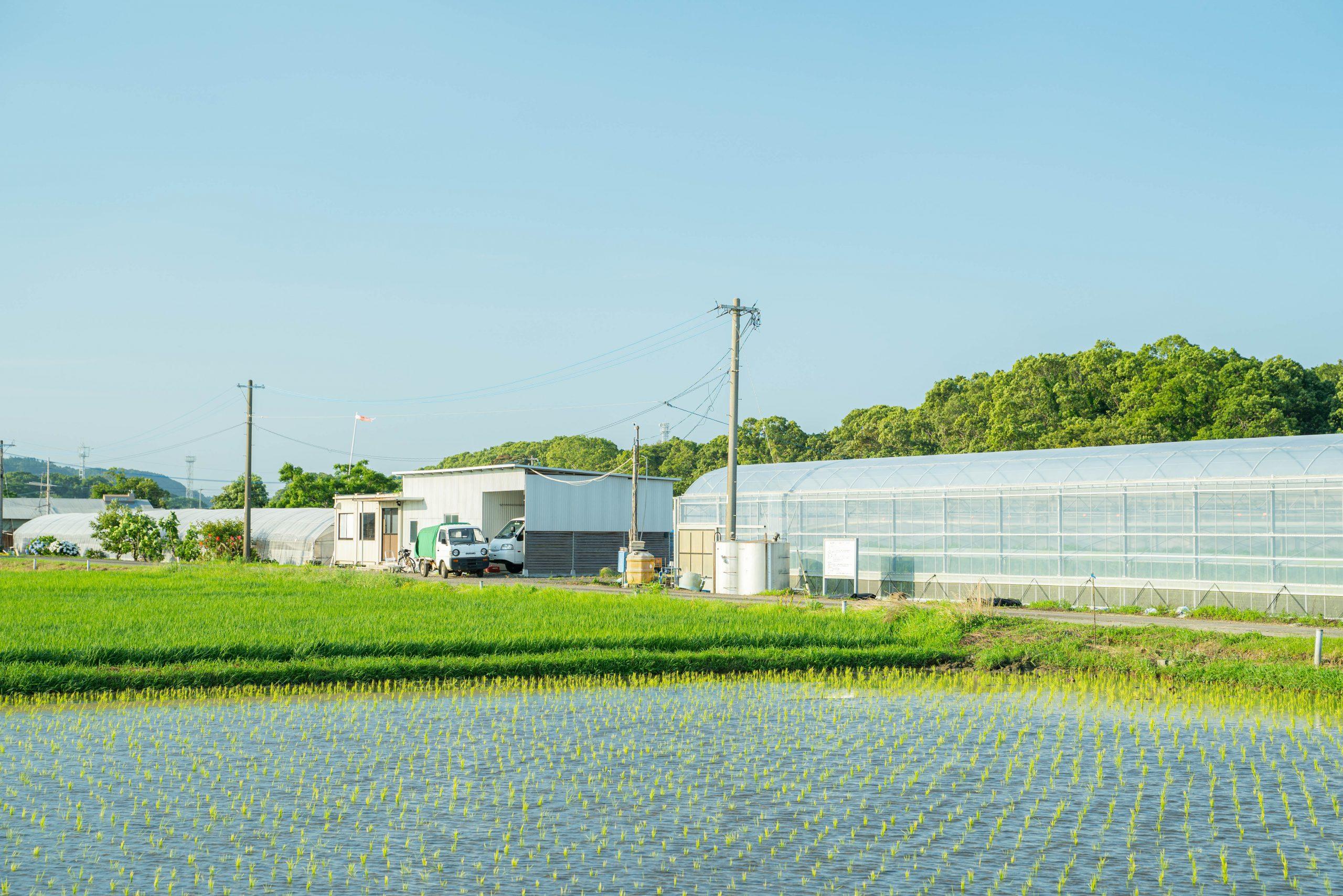 農業の町ー宮崎県新富町ー開発ラボ(軽トラ後ろ)