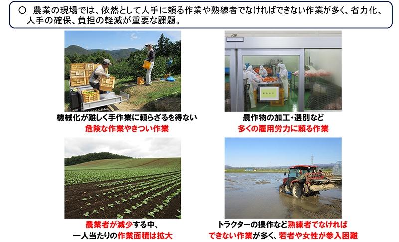 農業分野における課題②